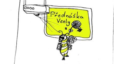 Photo of Zajímavé povídání o včelách v pátek v Korycanech