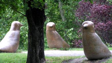 Photo of Kamenná kniha versus kulturní barbarství v Neratovicích