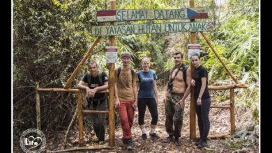 Photo of Na besedě o záchraně deštného pralesa se účastníci dostali do zásadní pře s hosty